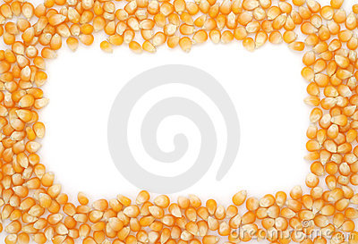 Corn seeds frame