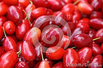 Cornelian cherries background