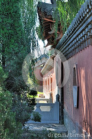 Corner of Chinese style garden