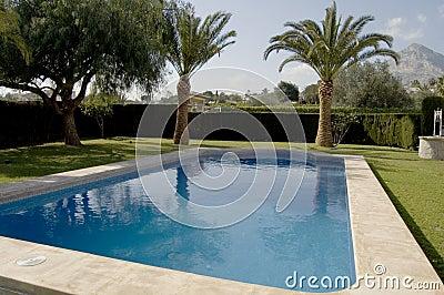 corner shot of a swimming pool