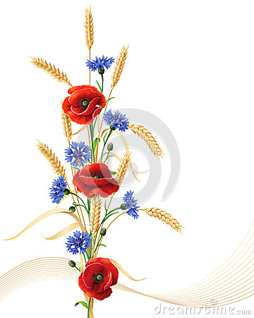 Free Cornflowers, Poppy Flowers  And Wheat Ears Bunch Stock Photos - 47993673