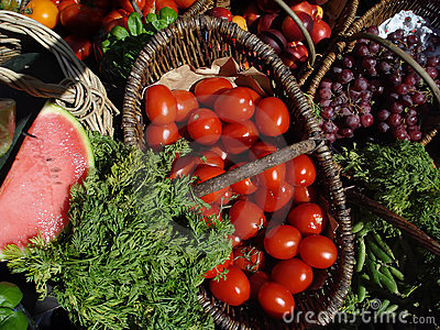 Cornucopia of Organic Fruits and Vegetables