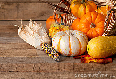 Cornucopia of Pumpkins, Gourds, and Dried Corn