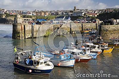 Cornwall - Newquay hamn - United Kingdom Redaktionell Foto