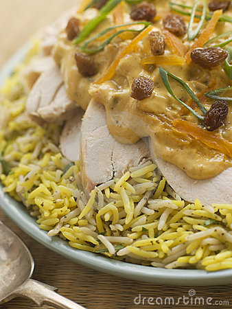Free Coronation Chicken And Rice Salad Stock Photography - 5626412