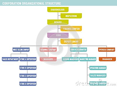 Corporation: organizational structure