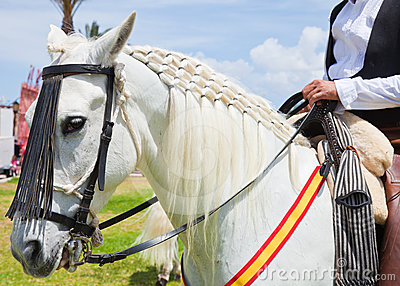 CORRALEJO, SPAIN - APRIL 28: Horse show Editorial Photo