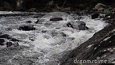 Corredeira de pressa no rio de Yamaska em Granby, Quebeque video estoque