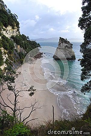 Free Corremandel New Zealand Stock Photo - 26696320