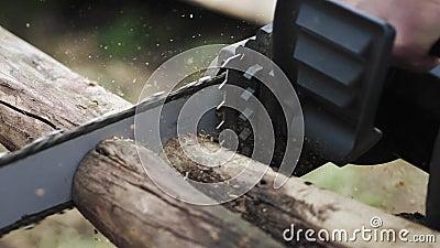 Corrente elétrica cortando uma árvore Fechamento Devagar o 4K video estoque
