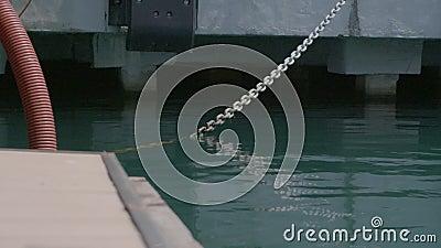 A corrente na plataforma vídeos de arquivo