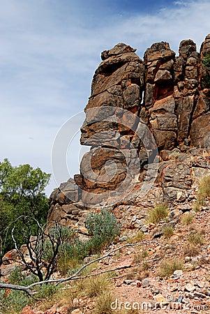 Free Corroboree Rock Fragment (Face) Stock Image - 12614621