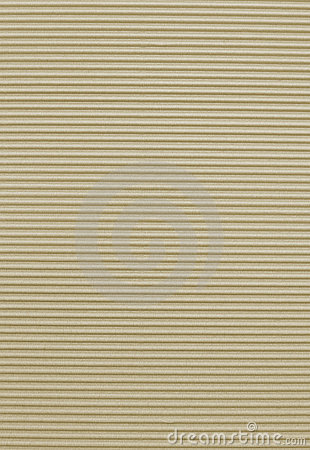 Free Corrugated Art Paper Texture Royalty Free Stock Photo - 6231585