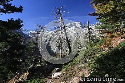 Corsica mountains, GR20 trail