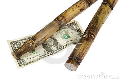 Cost of Sugar Cane