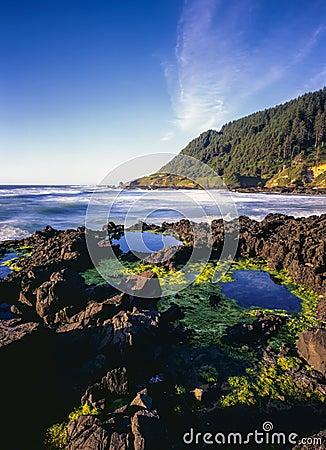 Costa e linha costeira de Oregon