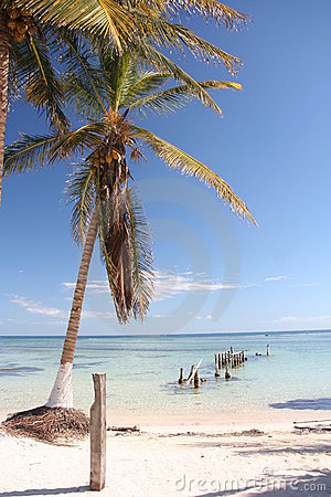 Costa Maya beachfront property