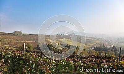 Costigliole d Asti (Piedmont, Italy): landscape