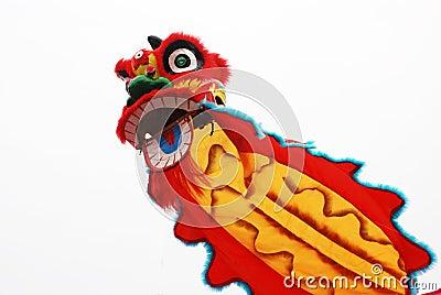 Costume di ballo del leone