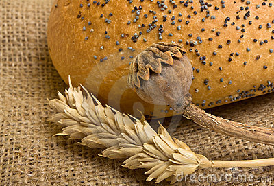 Cosy Bread Stock Photos - Image: 16444913