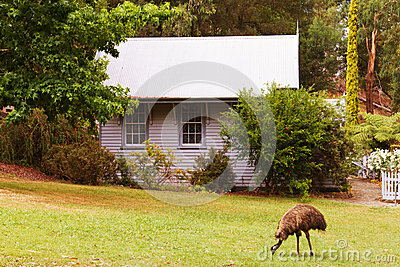 Cottage and emu
