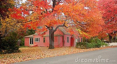 Cottage during foliage season