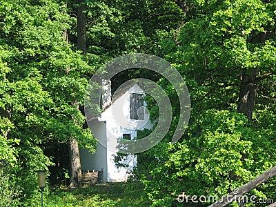 Cottage rumeno isolato nel legno