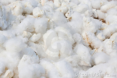 Cotton background