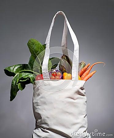 Free Cotton Shopping Bag Royalty Free Stock Photo - 19176165