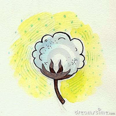 Cottonflower