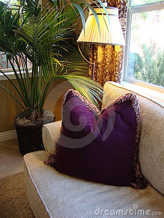 Couch and Purple Pillow