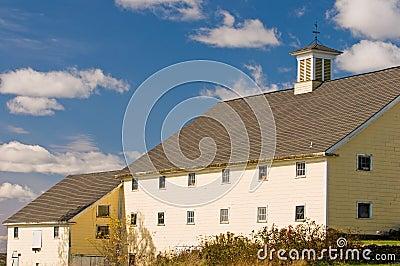 Country barn yellow
