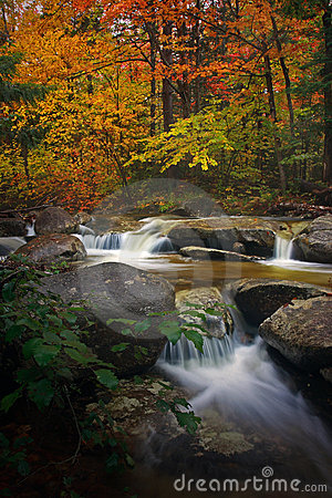 Country brook in autumn