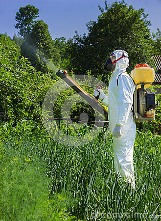 Country farmer spraying insecticide