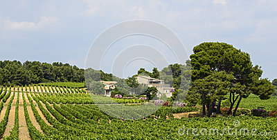 Country house near Montpellier