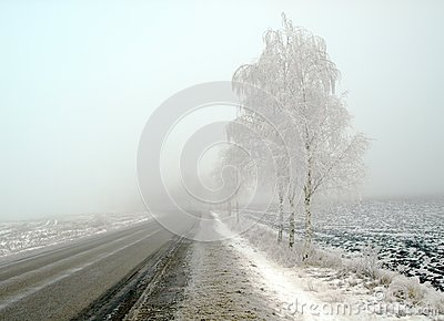 Country landscape in frost and fog