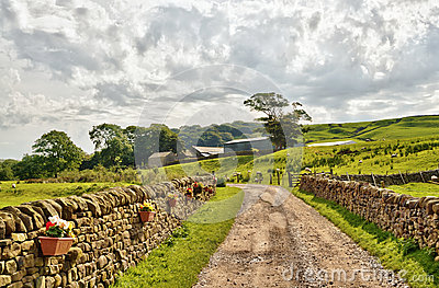 Country lane bordered by stone walls and fields.