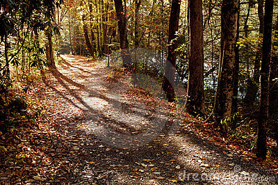 Country Path