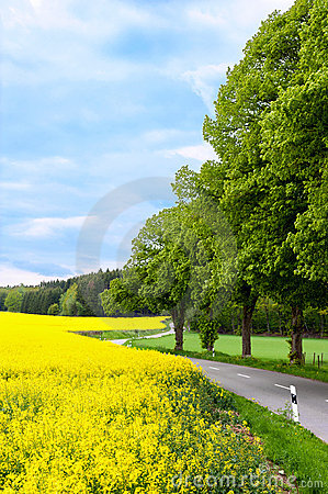 Free Country Road Royalty Free Stock Photos - 15678428