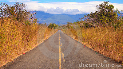 Country Road in Costa Rica