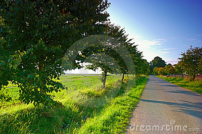 Country road in Denmark