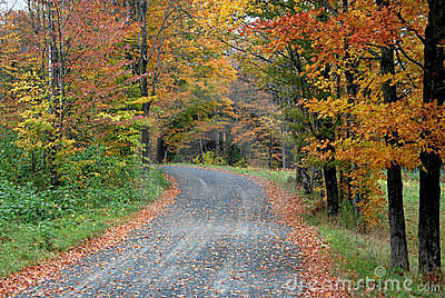 Country Road in Fall