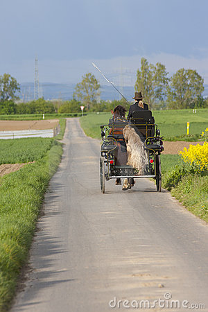 Country road with horse carriage