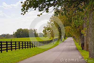 Country scenery on beginning of autumn season