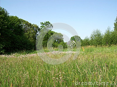 Countryliving stock photo image 50357899 - Countryside dream gardens ...