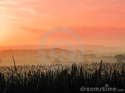 The countryside - early morning sunrise