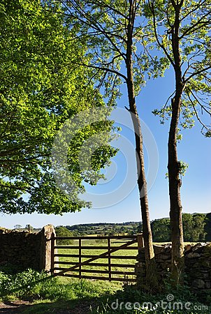 Countryside gate and wall