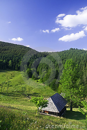 Countryside house in the Carpathian mountains