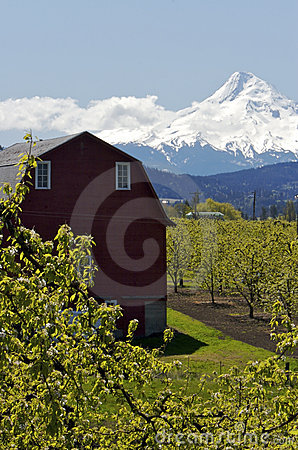 Free Countryside In Oregon Royalty Free Stock Photos - 2363098
