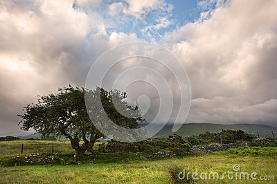 Countryside landscape panorama